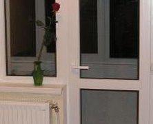 Usa si fereastra termopan ( panou )